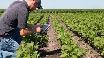 Oscar Green: il concorso che premia l'innovazione e la sicurezza in agricoltura