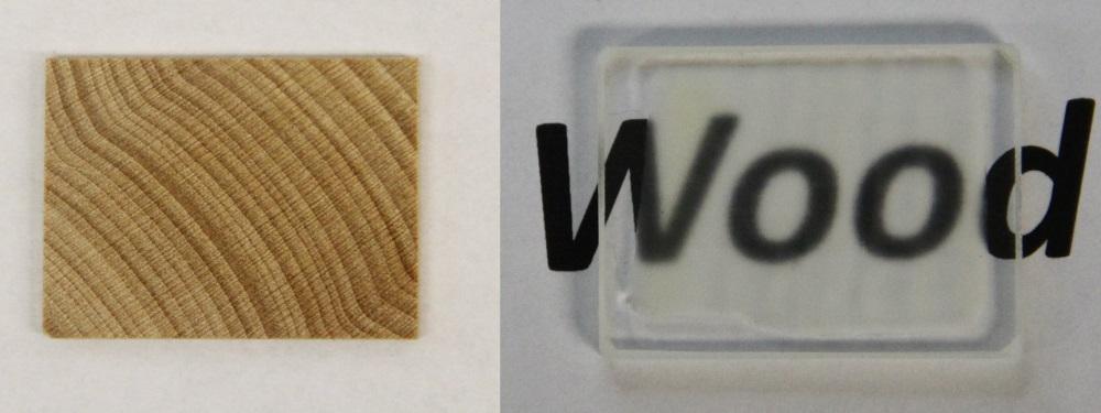legno trasparente