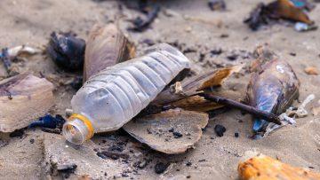 Plastica ed economia circolare: quale strategia per l'Europa?