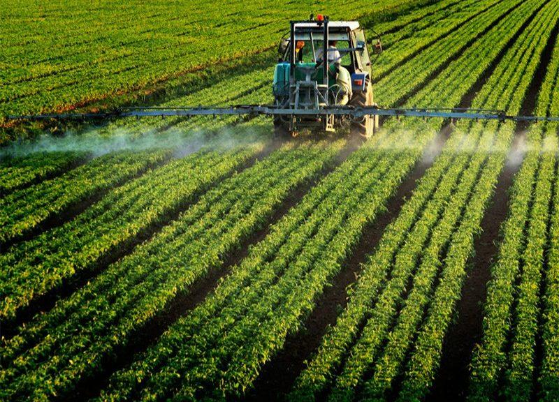 Campo agricolo_pesticidi