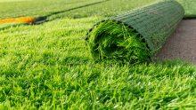 Campi sportivi in erba sintetica: i rischi derivanti dalla gomma riciclata da PFU