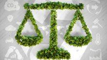 Diritto ambientale: un master per investire sul presente