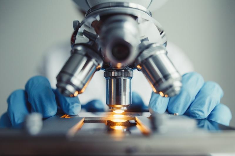 Biotech dell'ENEA
