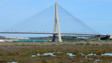 Che cosa sono i ponti strallati? Tipologie e modalità di progettazione