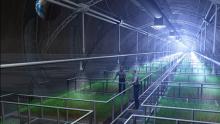 Serre idroponiche: la tecnologia in 8 mosse