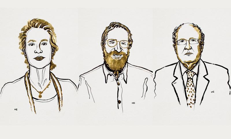 Frances H. Arnold, George P. Smith e Gregory P. Winter, vincitori del Premio Nobel per la Chimica 2018 – Ill. Niklas Elmehed, © Nobel Media