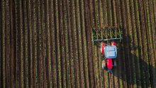 Consumo di suolo e rigenerazione urbana: ecco cosa sta cambiando