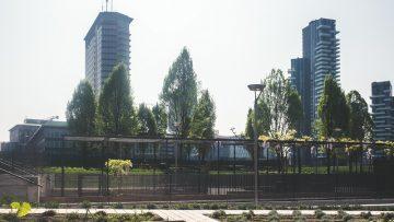 La Biblioteca degli alberi, aree verdi e innovazione per la nuova Milano