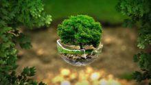 Valutazione di impatto ambientale (VIA): bocciato il ricorso delle Regioni